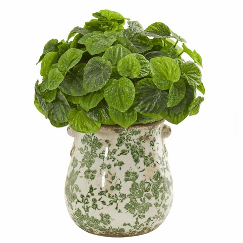 "18"" Peperomia Artificial Plant in Floral Vase (Real Touch)"
