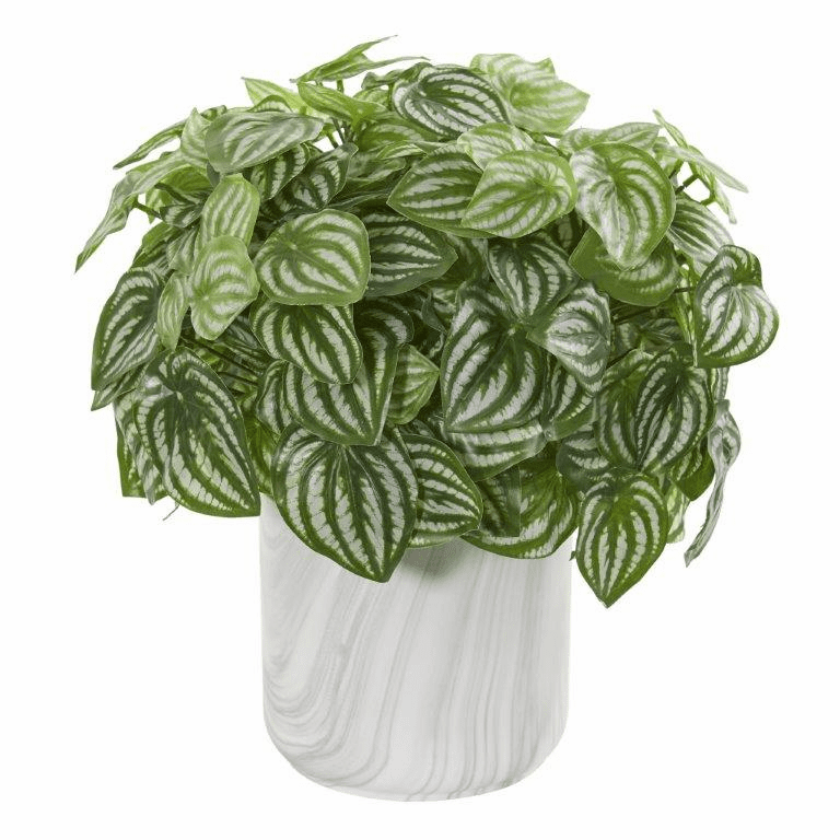 """14"""" Peperomia Artificial Plant in Marble Finished Vase (Real Touch)"""