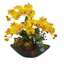"""21"""" Phalaenopsis Orchid Flower and Mixed Succulent Garden Artificial Arrangement in Black Vase - Yellow"""