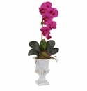 """25"""" Phalaenopsis Orchid and Succulent Artificial Arrangement in Urn - Beauty"""