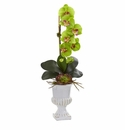 """25"""" Phalaenopsis Orchid and Succulent Artificial Arrangement in Urn - Green"""