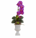 """25"""" Phalaenopsis Orchid and Succulent Artificial Arrangement in Urn - Orchid"""