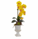 """25"""" Phalaenopsis Orchid and Succulent Artificial Arrangement in Urn - Yellow"""