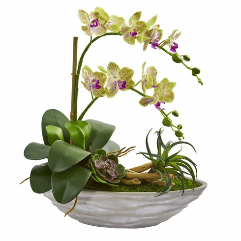 "19"" Phalaenopsis Orchid and Succulent Artificial Arrangement in White Vase"