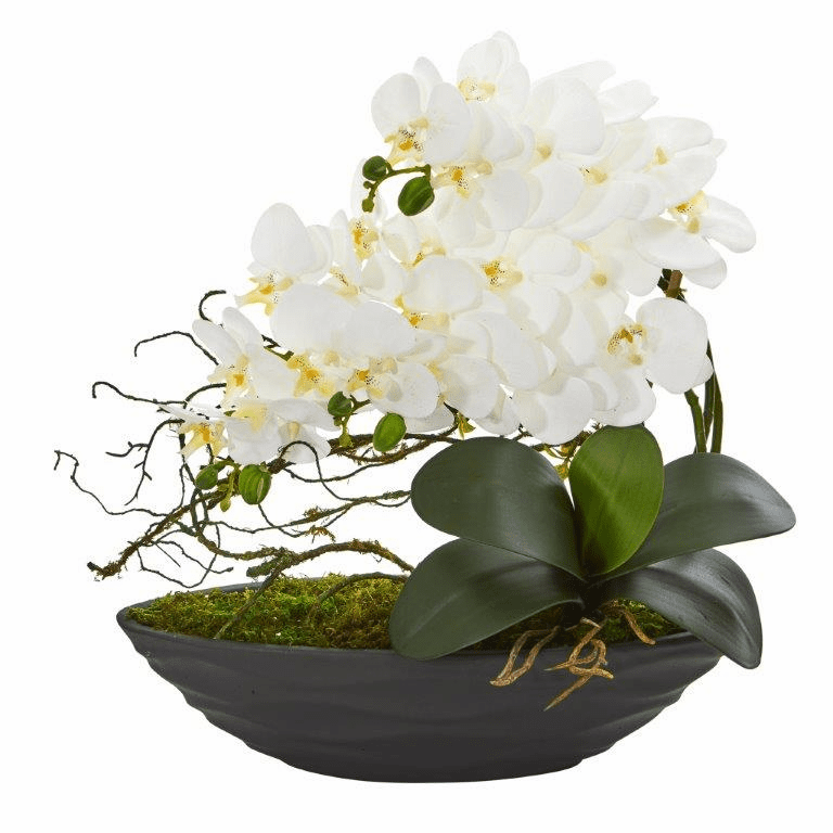 "17"" Phalaenopsis Orchid Artificial Arrangement in Decorative Planter - White"
