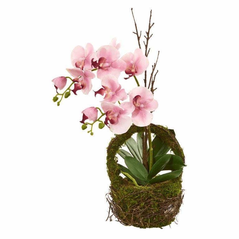 "20"" Phalaenopsis Orchid Artificial Arrangement in Twig Basket"
