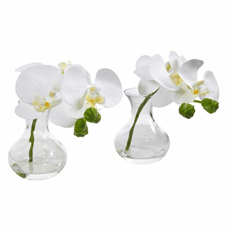"7"" Phalaenopsis Orchid Artificial Arrangement in Vase (Set of 2)"