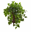 "31"" Philodendron Artificial Plant in Stand Planter"