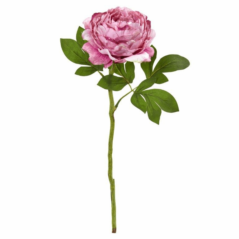 Pink 19� Peony Artificial Flower (Set of 6)