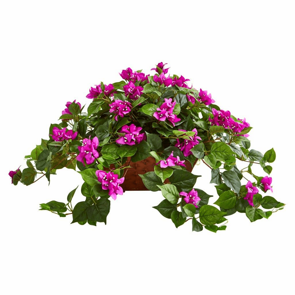 "17"" Purple Bougainvillea in Metal Planter"