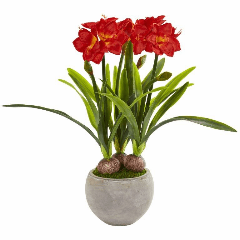 """35"""" Red Amaryllis Artificial Plant in Sandstone Bowl"""