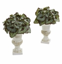 Rex Begonia Artificial Plant in White Urn (Set of 2) - N/A
