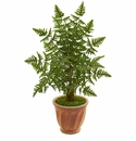 3.5' Ruffle Fern Palm Artificial Tree in Terra Cotta Planter