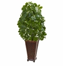 3.5' Schefflera Artificial Plant in Decorative Planter (Real Touch)