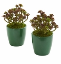"8"" Sedum Artificial Plant in Green Planter (Set of 2)"