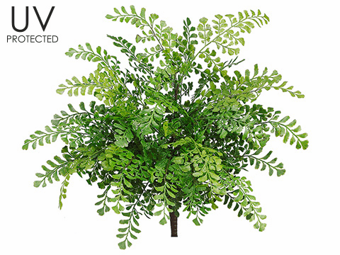 "Set of 12 - 19"" Outdoor Maidenhair Fern Bushes"