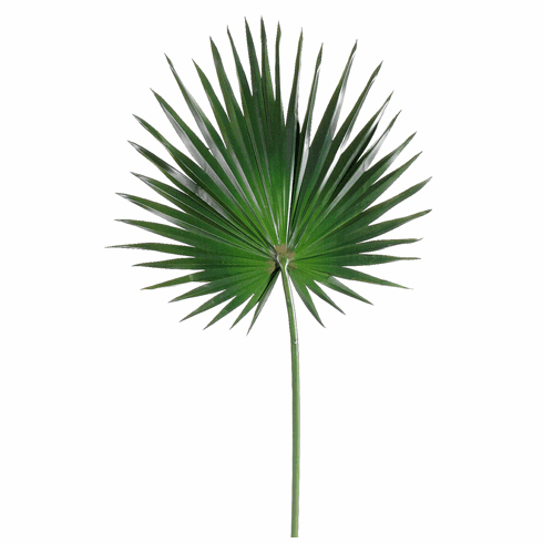 "Set of 12 - 30"" Artificial Fan Palm Stems"