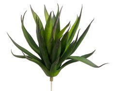 """Set of 12 - 6"""" Artificial Agave Bushes"""