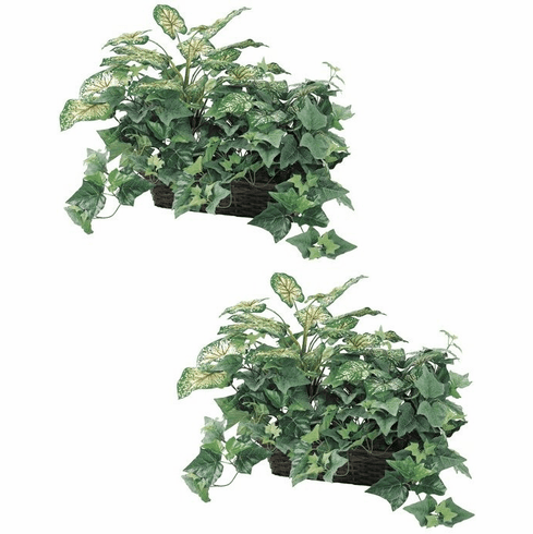"Set of 2 - 18"" Artificial Caladium Silk Plant Ledge Baskets"