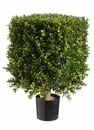"Set of 2 - 21"" Tall Artificial Square Boxwood Topiary Plants"
