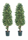 Set of 2 - 5' Silk Ficus Cone Shaped Artificial Topiary Trees