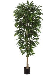 Set of 2 - 6.5' Artificial Mango Tree in Plastic Pot Two Tone Green
