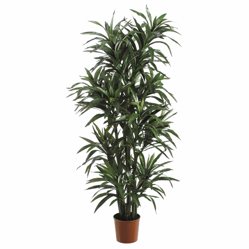 Set of 2 - 6' Extra Full Artificial Yucca Trees