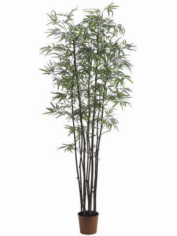 Set of 2 - 7' Black Bamboo Silk Trees