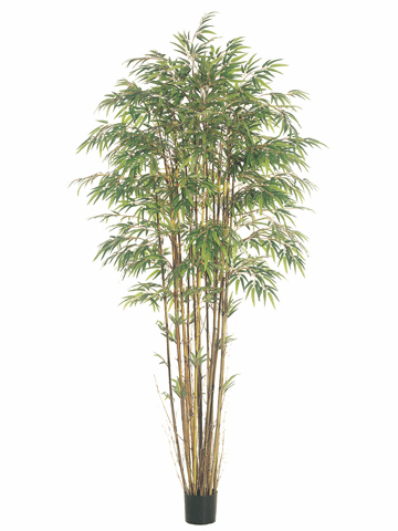 Set of 2 - 8' Natural Trunk Silk Bamboo Trees