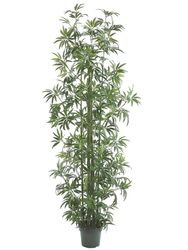 Set of 2 - 8' Silk Bamboo Trees with 1746 Leaves