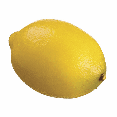 Set of 6 - 85mm Artificial Eureka Lemons