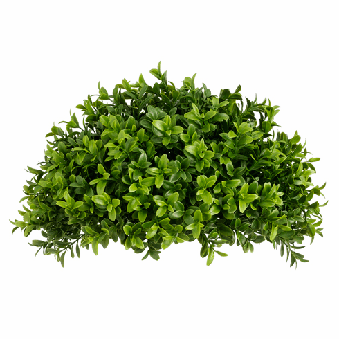 "Set of 6 - Artificial Boxwood Half Ball - 13"" Width"