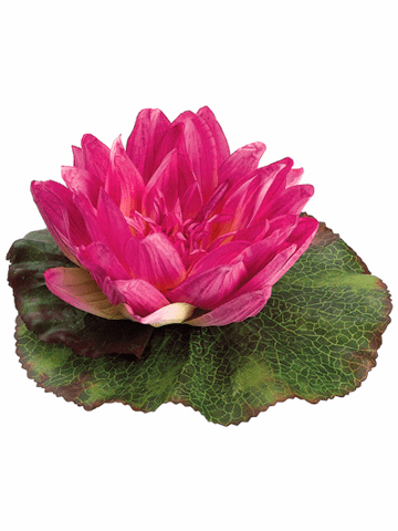 Silk Floating Water Lily Flowers - Set of 24 - See inside for colors