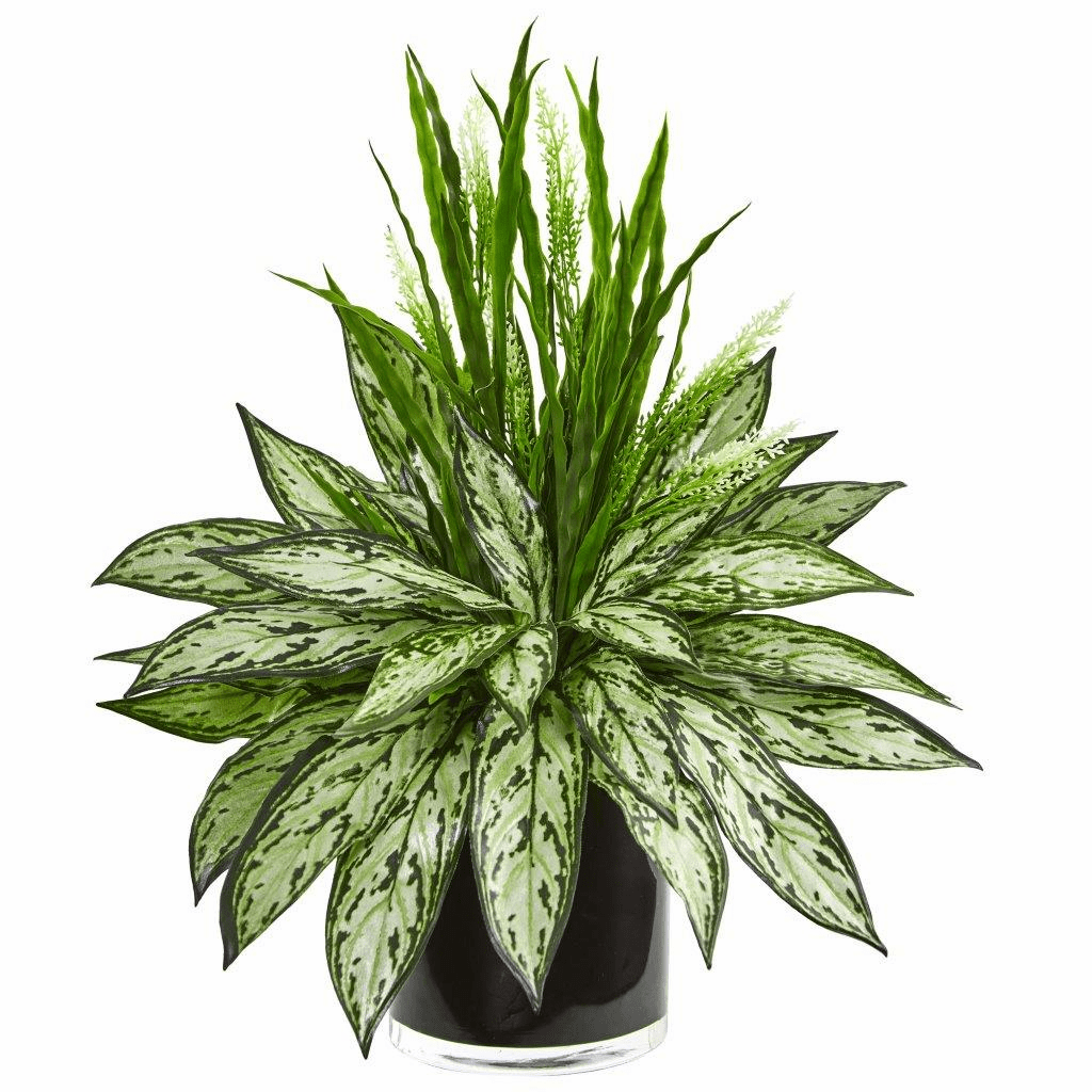 """20"""" Silver Queen and Grass Artificial Plant in Black Vase"""