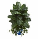 4.5' Spathifyllum & Bougainvillea Artificial Plant in Blue Planter
