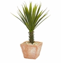 "21"" Spiky Agave Artificial Plant in Terracotta Planter"