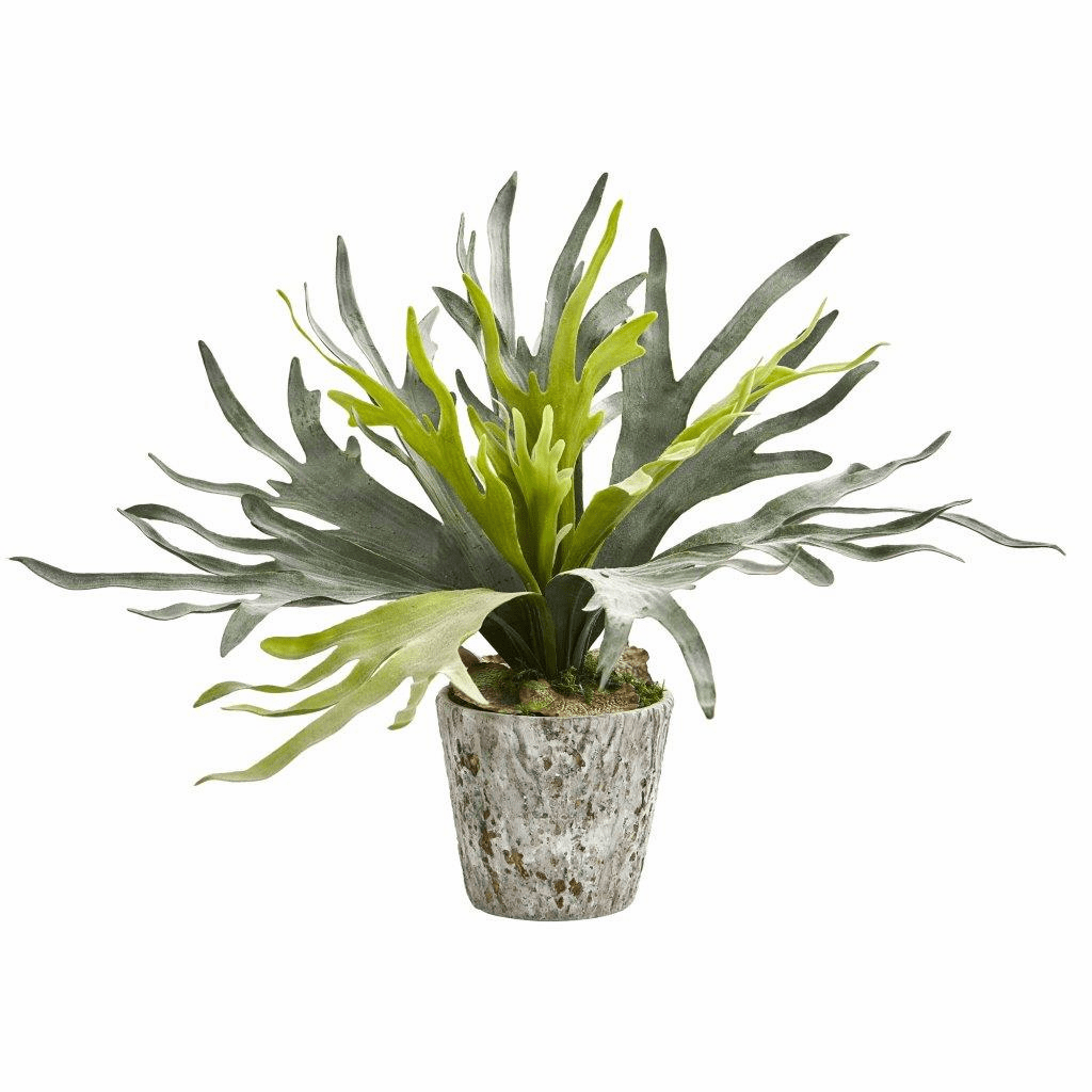 """22"""" Staghorn Artificial Plant in Weathered Oak Planter"""