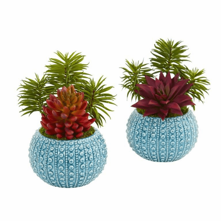 "10"" Succulent Artificial Plant in Blue Vase (Set of 2)"