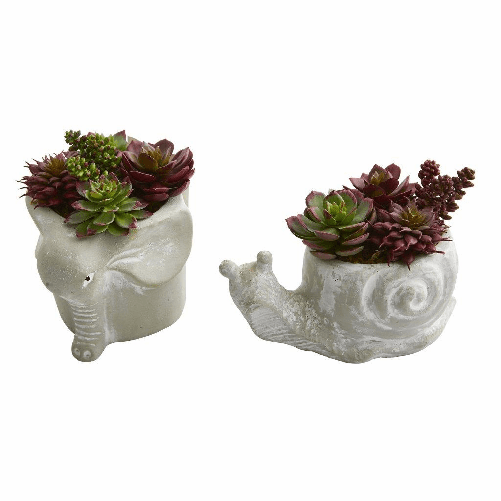"6"" Succulent Artificial Plant in Elephant and Snail Planter (Set of 2)"