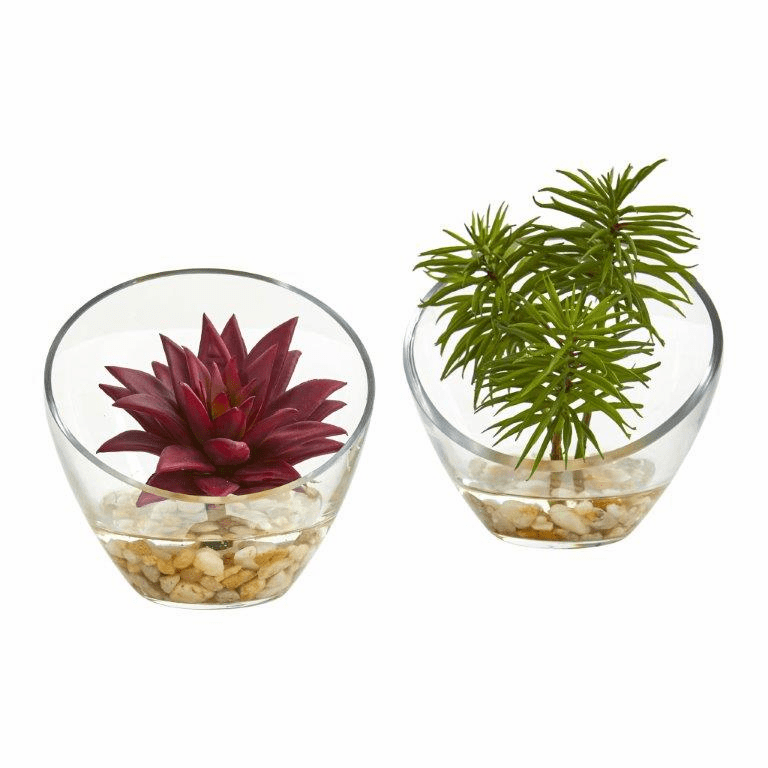 "5"" Succulent Artificial Plant in Slanted Glass Vase (Set of 2)"