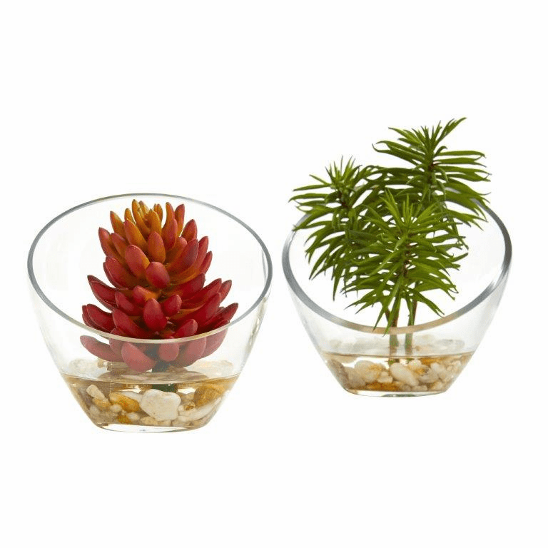 "7"" Succulent Artificial Plant in Slanted Glass Vase (Set of 2)"