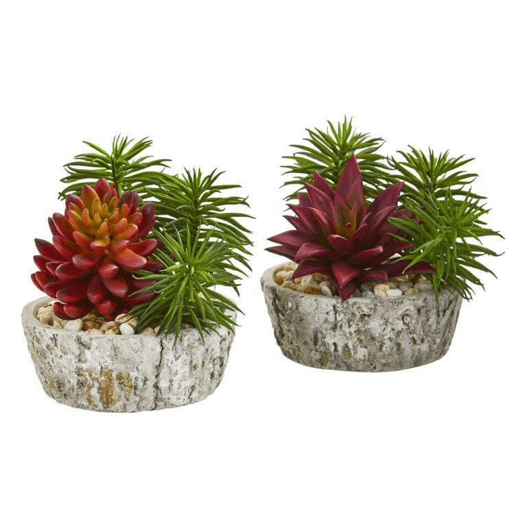 "7"" Succulent Artificial Plant in Weathered Oak Planter (Set of 2)"