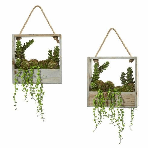 "8"" Succulent Garden Artificial Plant in Decorative Hanging Frame (Set of 2)"