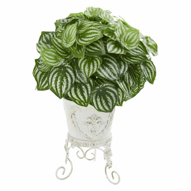 """18"""" Watermelon Peperomia Artificial Plant in Metal Planter (Real Touch)"""