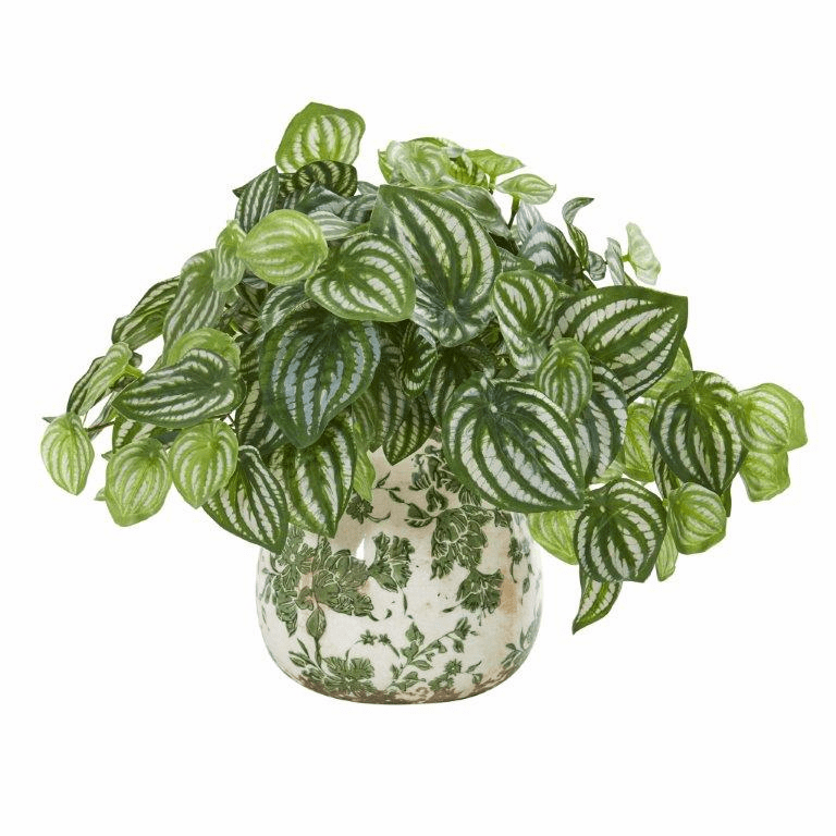 """12"""" Watermelon Peperomia Artificial Plant in Vase (Real Touch)"""