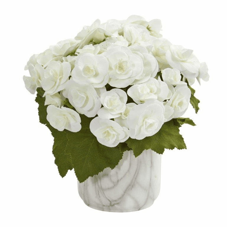 "10"" White Begonia Artificial Arrangement in Vase"
