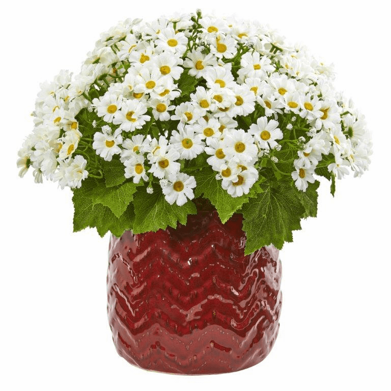 "14"" White Daisy Artificial Arrangement in Red Planter"