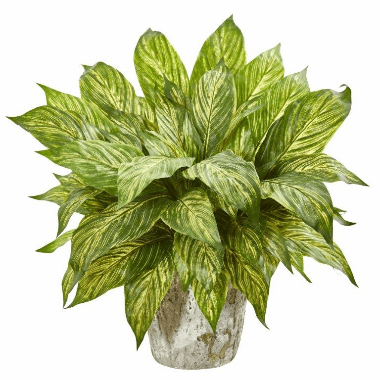 """20"""" Yellow Green Musa Leaf Artificial Plant in Weathered Oak Planter"""