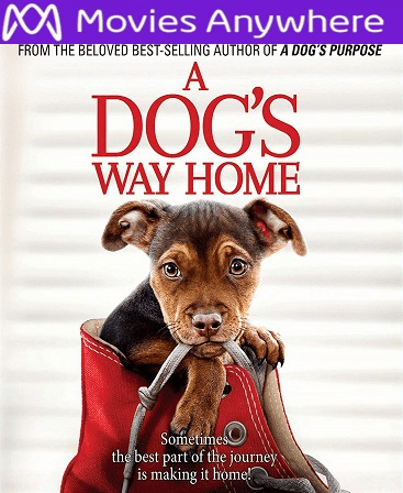 A Dog's Way Home HD UV or iTunes Code via MA