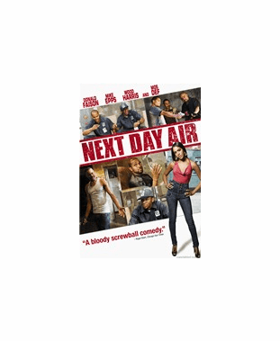 Next Day Air DVD Movie (USED)